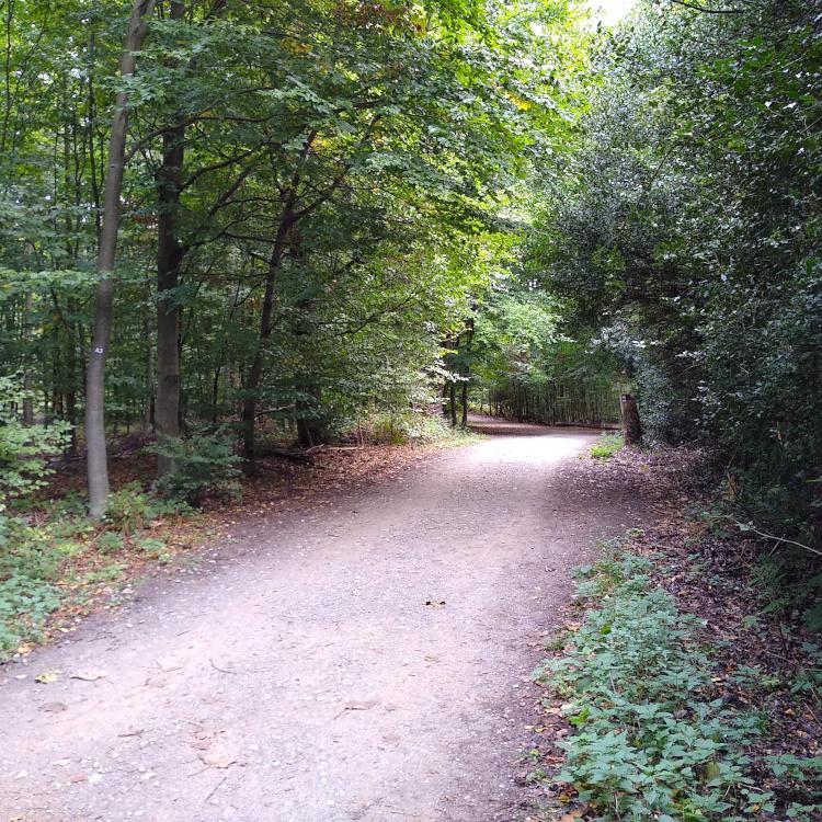 Oberbusch in Ratingen nahe der Jugendherberge