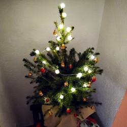 Foto zu Weihnachtsbaum, Weihnachten