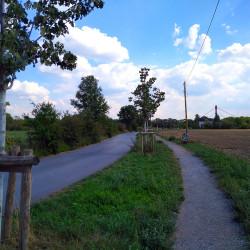 Niederhalener Dorfweg in Duisburg-Baerl