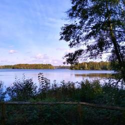 Foto zu Ausblick, Wildförstersee, Sechs-Seen-Platte, Duisburg, Wedau, wanderweg
