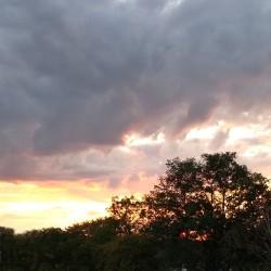 Foto zu Sonnenuntergang, Herbst, Wolke
